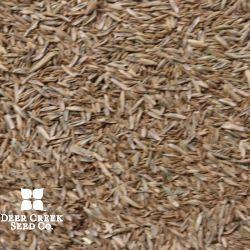 50/50 Kentucky Bluegrass/Perennial Ryegrass Turf Mix