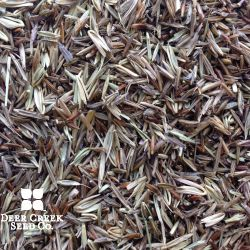 Lowland Native Grass Mix