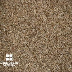 All-American Athletic Turf Mix