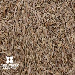 Grass Warrior Hay & Pasture Mix