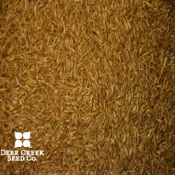 Equine Hy Protein Pasture Mix