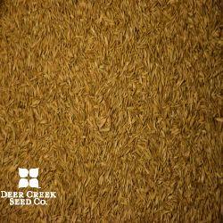 Equine Pure Grass Pasture Mix