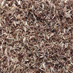 Upland Native Grass Mix