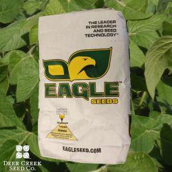 Eagle Big Fellow RR Soybeans