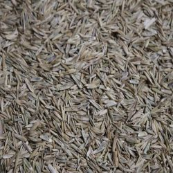 Greenton Grass & Pasture Mix