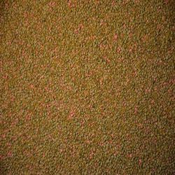 Premium Lowland Clover Mix (Coated)