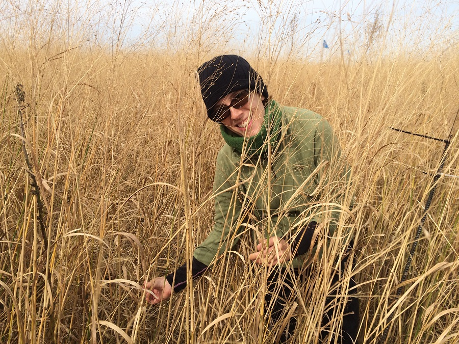 Food Plot Options to Attract Your Target Game Species - Part 2